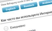 Beispiel mehrsprachige Umfrage