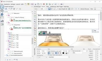 Umfrage Software Exavo SurveyStudio - Chinesische Umfrage
